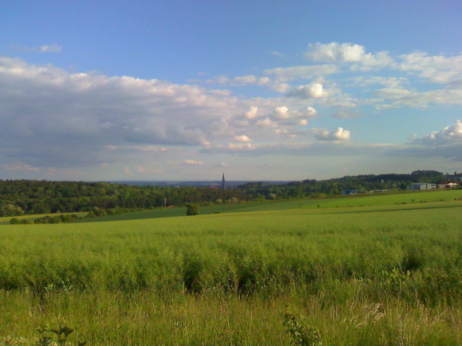 Blick auf Ulm von Böfingen aus...